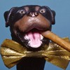 Triumph the Insult Comic Dog visits Bonnaroo.