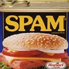 Over eighty percent of spam in June sent from botnets.