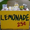 Selling lemonade in Central Park will get you slapped with a fine.